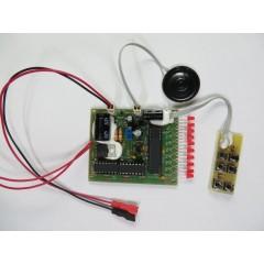 Металлоискатель импульсный ClonePI-W (собранная электроника)